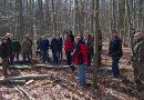 Gemeindevertreter informieren sich im Wald