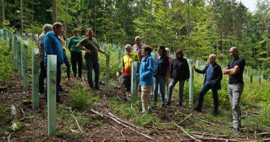 Welche Zukunft hat der Gemeindewald